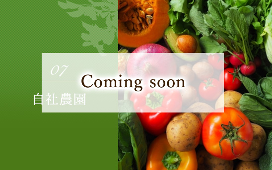 自社農園 Comming soon